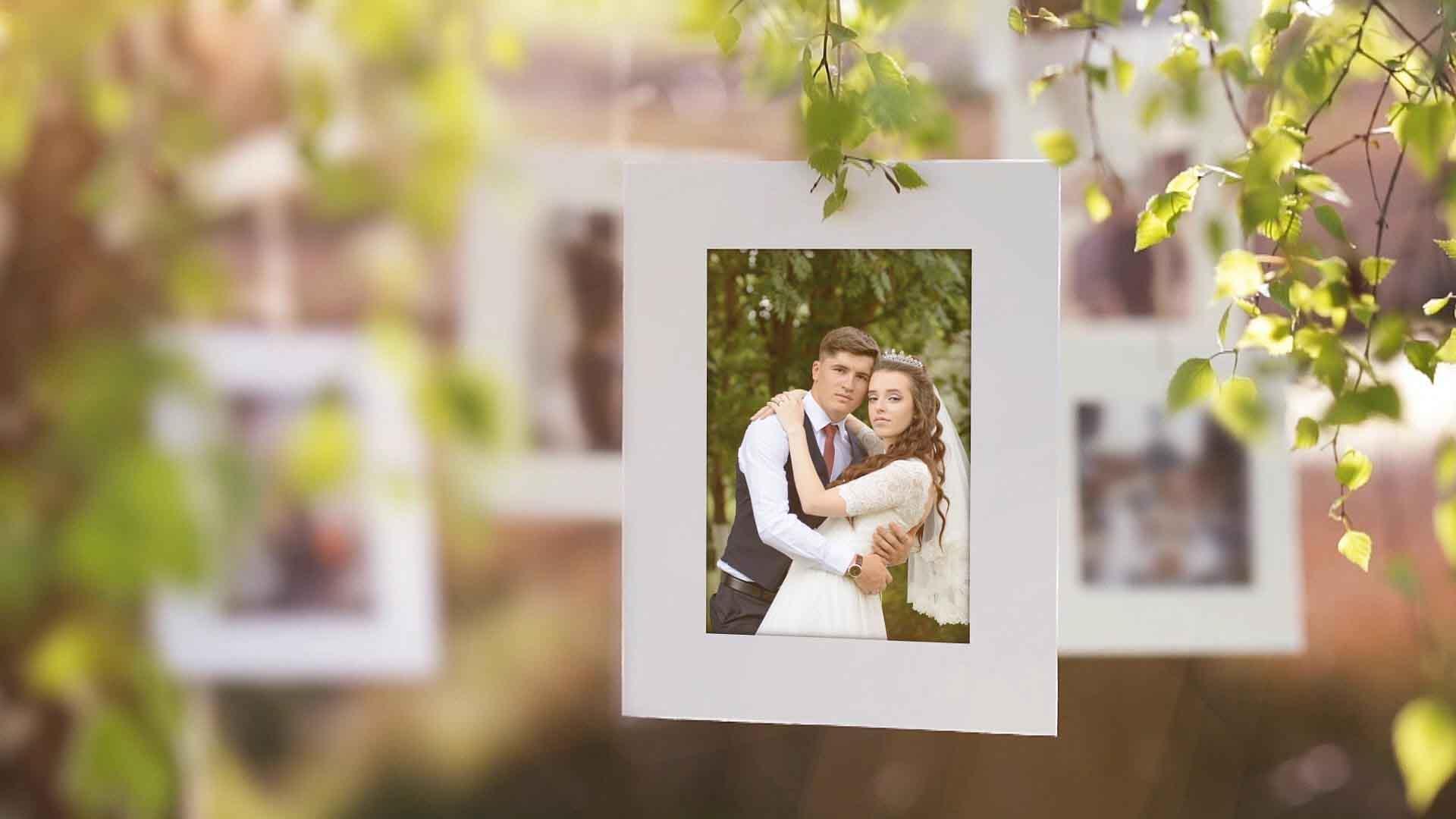 фотограф на свадьбу, фотосъемка свадьбы, свадебный фотограф, свадебная фотосессия, свадебная фотосъемка