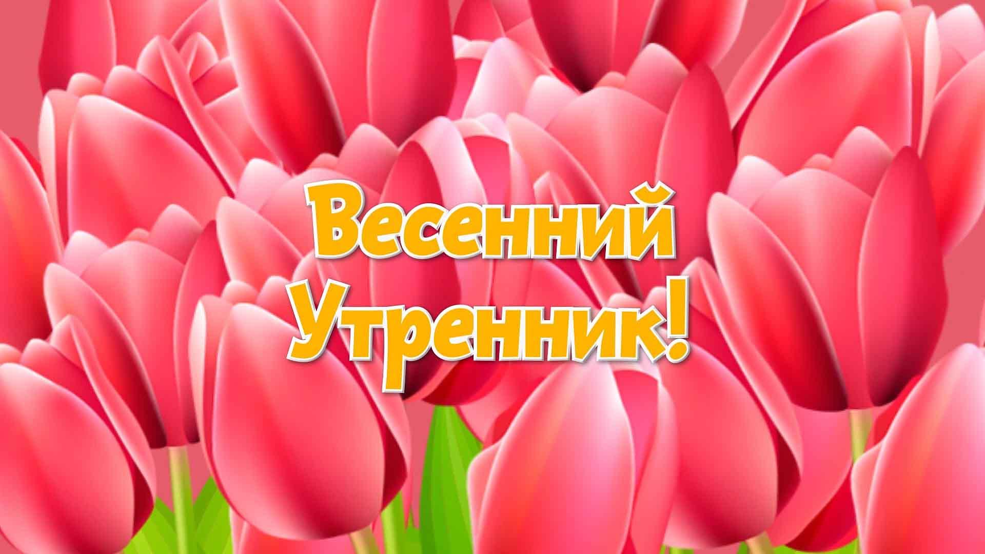 видеооператор на весенний утренник Москва Королев Мытищи Пушкино Ивантеевка
